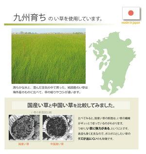 置き畳半畳い草ラグ夏用『かるピタ』82×82cm12枚組
