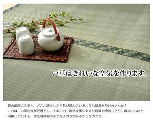 純国産減農薬栽培い草上敷きカーペット糸引織『西陣』本間8畳(約382×382cm)熊本県八代産イ草使用