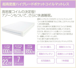 収納付きベッド【セミダブルサイズ/高密度アドバンスポケットコイル】二口コンセント/宮付きホワイト(白)【代引不可】