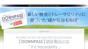 【単品】掛け布団キングモカブラウン【DOWNPASS認証】フランス産ホワイトダックダウンエクセルゴールドラベル羽毛掛布団
