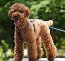High 5 Dogsが作る本格的なクッション付きロープハーネス【Rope Walker(ロープウォーカー)】XXS〜Sサイズ
