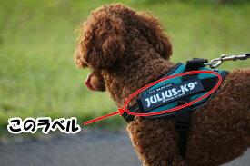 Julius-K9 IDCパワーハーネス オリジナルラベル