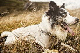 【Hurtta】【フルッタ】・ドッグオーバーオール SUN & Bug Blocker 中型犬〜大型犬用サイズ