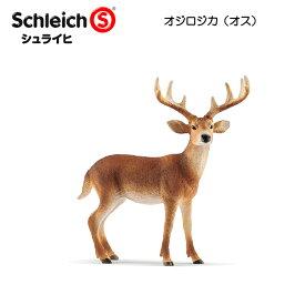 【10%OFFクーポン配布中】オジロジカ(オス) 14818 動物フィギュア ワイルドライフ シュライヒ
