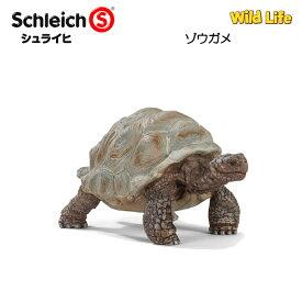 【10%OFFクーポン配布中】ゾウガメ 14824 動物フィギュア ワイルドライフ シュライヒ