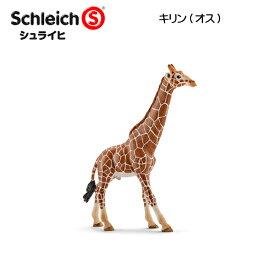 【10%OFFクーポン配布中】キリン(オス) 14749 動物フィギュア ワイルドライフ シュライヒ