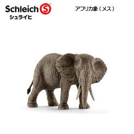 【10%OFFクーポン配布中】アフリカ象(メス) 14761 動物フィギュア ワイルドライフ シュライヒ