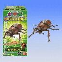 ムシキング新甲虫図鑑DX3 6種フルコンプ!