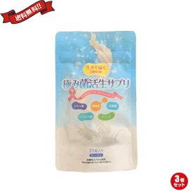 【ポイント6倍】最大33倍!乳酸菌 サプリ ダイエット 極み菌活生サプリ 31粒 3袋セット