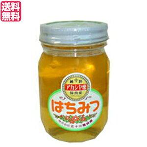 【ポイント最大3倍!】はちみつ 蜂蜜 国産 五十川養蜂園 国産はちみつ アカシア 500g 送料無料