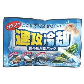 送料無料 紀陽除虫菊 携帯用冷却パック 速攻冷却