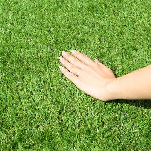 【送料無料】人工芝ロール1x1mロールタイプ100cm×100cmマット人工芝ガーデンターフリアル人工芝リアルターフマットガーデニング園芸芝花ガーデンDIY芝生ガーデニング用芝ベランダバルコニーテラスエクステリア緑グリーン人気おしゃれ