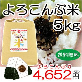 よろこんぶ米5kgつや姫【送料無料!】