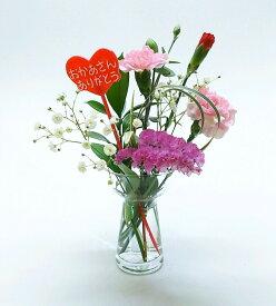 【5/11から発送です】送料無料 母の月 フラポス プレゼント 国産カーネーション使用 フラワーポスト母の日バージョン カーネーションやカスミなど母の日の定番のお花をご自宅のポストにお届けします! 生花 ギフト 買い回り