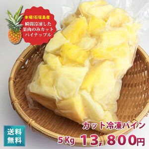 【送料無料】一口サイズの冷凍 パイナップル パイン(5kg)沖縄県産(国産)業務用でも