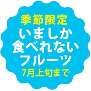 秀品マンゴー1kg(2〜3玉)朝獲りもぎたて沖縄宮古島産マンゴーの収穫量日本一の宮古島より直送【順次発送中】