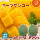 キーツマンゴー1.5kg(2玉)朝獲りもぎたて 沖縄 宮古島産 マンゴーの収穫量日本一の宮古島より直送【予約販売中】【7月中旬より順次…