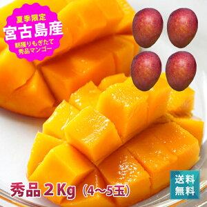 https://image.rakuten.co.jp/385store/cabinet/mango/imgrc0066589200.jpg