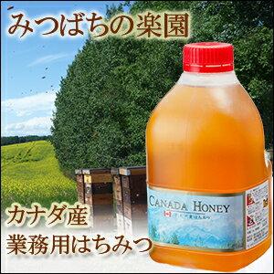 業務用 カナダ産蜂蜜(はちみつ)2kg純粋蜂蜜 専門店蜂蜜