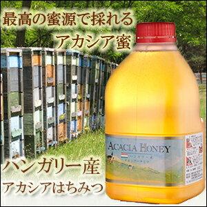 【業務用】ハンガリー産アカシア蜂蜜 2kgはちみつ【送料無料】【純粋蜂蜜】
