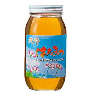 【月間優良ショップ2019年4.5.6月受賞店】中国産 百花 蜂蜜 1kg 瓶 ? はちみつ ハチミツ 純粋蜂蜜 食品 健康 ハニー 人気  熊手のはちみつ 熊手 業務 老舗 リピータ多数 使いやすい HACCP取得 大自