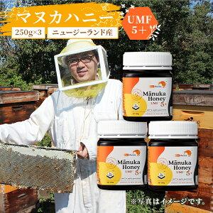 送料無料 ニュージーランド産 マヌカはちみつ UMF5+ 250g×3個 | マヌカハニー ニュージーランド umf おすすめ マヌカ蜂蜜 マヌカハチミツ manuka 初回 マヌカ はちみつ ハチミツ 蜂蜜 純粋はちみつ
