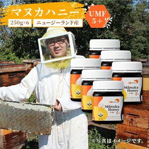 送料無料 ニュージーランド産 マヌカはちみつ UMF5+ 250g×6個 | マヌカハニー ニュージーランド umf おすすめ マヌカ蜂蜜 マヌカハチミツ manuka 初回 マヌカ はちみつ ハチミツ 蜂蜜 純粋はちみつ