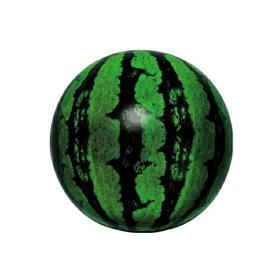 89cd9bfcf0d 【メール便送料無料】ビーチボール 40cm リアルスイカバルーン イガラシ VAP-001
