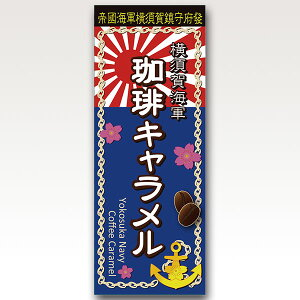 横須賀海軍 珈琲キャラメル10入