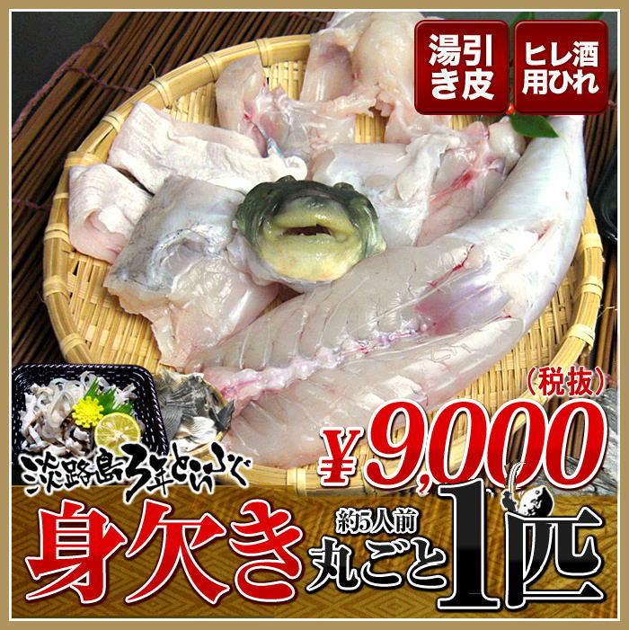 3年とらふぐ 丸ごと1匹身欠き(元魚1.3kg:大きくなりました )鍋5人前 淡路島3年とらふぐ 若男水産