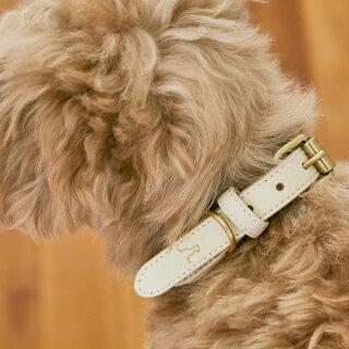 citydogペット用ロープ首輪シティロープカラーCITYROPECOLLAR犬猫伸縮おしゃれハーネス2頭引き大型犬中型犬小型犬国産日本製職人シティドッグシティードッグ多頭おでかけシンプル高品質