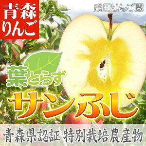 りんご 青森県産 特別栽培(減農薬/化学肥料不使用) 葉とらず サンふじ ●家庭用 約5kg箱(16〜18個入)【青森りんご 蜜入りリンゴ 蜜入りりんご 訳あり 葉取らず 林檎 りんごジュースに ギフト