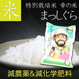 【送料無料】特別栽培米(減農薬&減化学肥料) お米 まっしぐら 10kg 毎日食べるから、体に優しいお米を。【母の日 父の日 お中元 お歳暮 青森 あおもり 名産 青森県産 ギフト お米