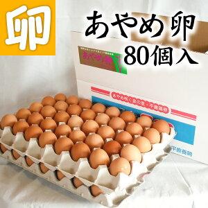 【送料無料】あやめ卵 80個 たまごかけごはん専用高級玉子!! あんしん やさしい うめぇ たまごです♪【母の日 父の日 お中元 お歳暮 お歳暮ギフト 敬老の日 ギフト  贈答 卵かけ