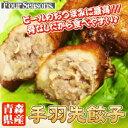 ■B級グルメ■青森県産手羽先餃子ビールのおつまみに最高!!