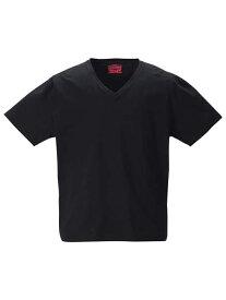 2PT−shirt 大きいサイズ メンズアンダーウェア Levis2PVネック半袖Tシャツ Levis 2L 3L 4L 5L 6L 8L 大きいサイズの店 フォーエル