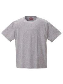 2PT-shirt 大きいサイズ メンズアンダーウェア Levis2Pクルーネック半袖Tシャツ 2L 3L 4L 5L 6L 8L 大きいサイズの店 フォーエル
