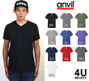 Ys-anvl-t0982-1