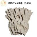 【日本製】手袋抗菌除菌冷え対策温活あったかてぶくろギフト消臭清潔衛生手袋テブクロ