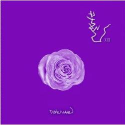 【CD】ブファル/Vol.13-PurpleWave[K-POP輸入盤]