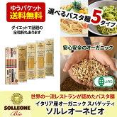 イタリア産有機小麦使用ソル・レオーネビオパスタSOLLEONEBio選べる5種類ゆうパケット送料無料sol01