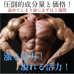 パワーアルキックス60包元気に歩く力強く子作り妊活男子生涯現役絶倫精力