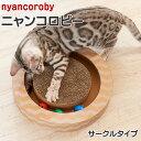 エイムクリエイツ ニャンコロビー サークル (11743) 【猫 つめとぎ おもちゃ ダンボール】