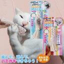 キャティーマン にゃんデント コットンでハミガキ】猫用 ねこ用 ネコ用/猫用品と猫雑貨