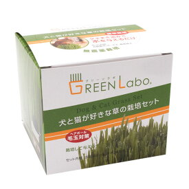 エイムクリエイツ 犬と猫が好きな草 栽培セット ペットグラス 猫草