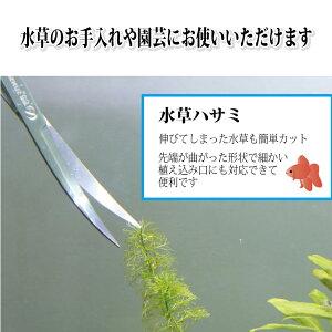 水草用 25cm トリミングハサミ 水草 先端カーブ はさみ 手入れ 水槽 掃除 管理 金魚 熱帯魚 M39M