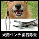 まる得 犬用ペンチ 歯石除去 NEW(メ1) M39M