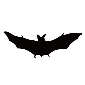 ステッカー コウモリF はばたくコウモリ 飛び立つこうもり バットマン ハロウィン かっこいい クール/おしゃれステッカー/アクリルプレート/パーテーション/車/ガラス/窓/装飾/デコ/【メー