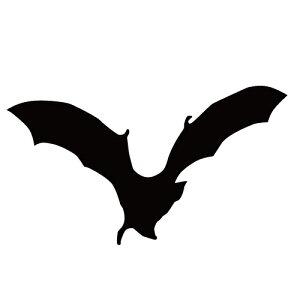 ステッカー コウモリK はばたくコウモリ 空舞うコウモリ バットマン ハロウィン かっこいい クール/おしゃれステッカー/アクリルプレート/パーテーション/車/ガラス/窓/装飾/デコ/【メール