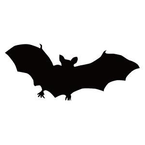 ステッカー コウモリM はばたくコウモリ 空舞うコウモリ バットマン ハロウィン かっこいい クール/おしゃれステッカー/アクリルプレート/パーテーション/車/ガラス/窓/装飾/デコ/【メール